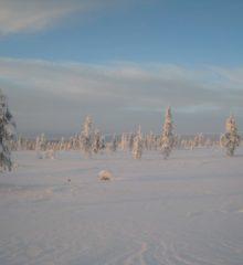 kaunispää talvi_iso